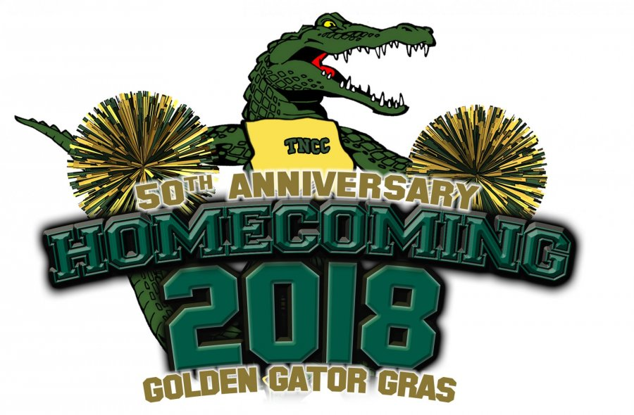 Image for 2018 Homecoming Features Appearance by NFL Team's Cheerleaders
